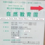 自然教育園.jpg